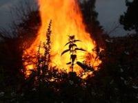 Afbrændingsforbud i Odense Kommune