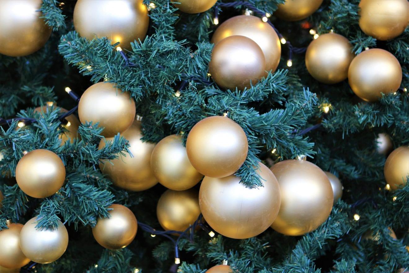 Nu' det jul igen - Plantorama inviterer til stort julemarked