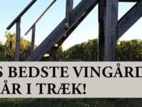 Østrigs bedste vingård, foto: Holte Vinlager